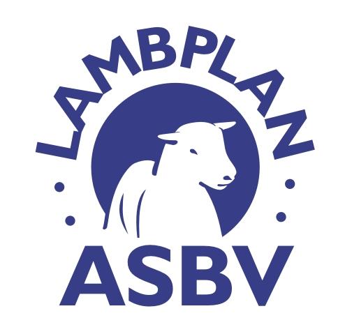 LambplanASBV300dpi (1)