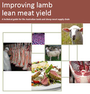 Improving-lamb-lean-meat-yield