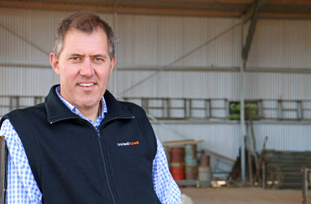What Should Your Ewes Look Like in 2027?