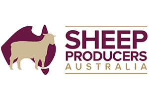 Sheep-Producers