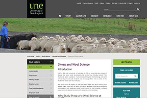 Opportunities to study Sheep