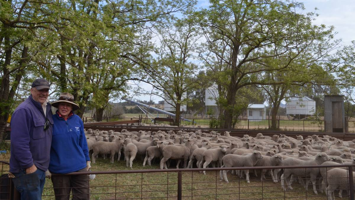 Tony and Annabel Wallace, Erinvale, Murringo, after drafting and weighing White Suffolk / Merino weaner lambs.