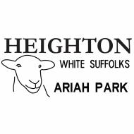 Heighton White Suffolk Stud